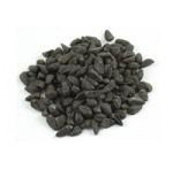 Morning Glory seeds| Pearly Gates | 10 g